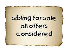 Custom Made T Shirt Sibling For Sale All Offers Considered Boys Girls Kids Funny