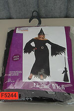 California Costume Elegant Witch Women's Halloween Costume F5244