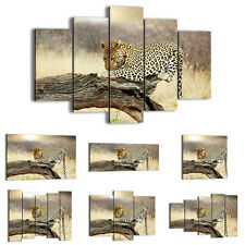 FRAMED Canvas Print Picture 48 Shapes Wall Art animal cheetah landscape 2599 an