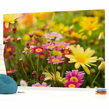 Spring Flowers Floral Rural PHOTO WALLPAPER PICTURE WALL MURAL W1036 VE