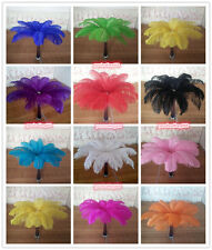 Wholesale! 10-100pcs High Quality Natural Ostrich Feathers 10-12iinch/25-30cm
