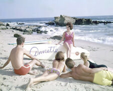 ANNETTE FUNICELLO SWIMSUIT & SURFBOARD PHOTO OR POSTER