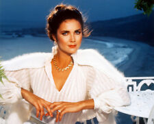LYNDA CARTER GLAMOUR POSE ON FLOOR COLOR PRINT PHOTO OR POSTER