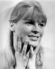 JULIE CHRISTIE DARLING PHOTO PHOTO OR POSTER