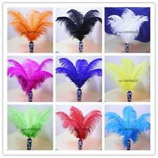 Wholesale /10/50/100 pcs high-quality natural ostrich feathers 6-24 inch/15-60cm