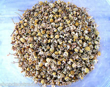 Egyptian Chamomile Whole Flowers 4OZ B005 Relaxation Herb Cure Good Luck Money