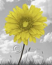 Beauty in the Clouds- Yellow Floral Home Decor Picture Wall Art Bedroom  1
