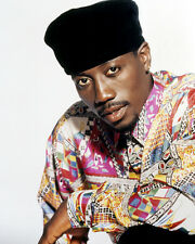 Wesley Snipes Poster or Photo