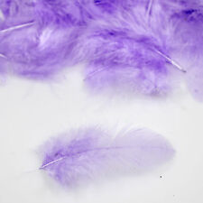 Small Feathers Arts Crafts Scrapbooking Card Making Embellishments Lilac