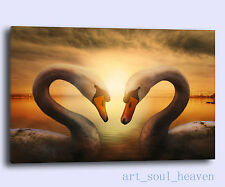 Oil Painting HD Print Wall Decor Art On Canvas,Swans-Birds 24x36.(Unframed)