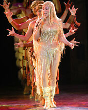Cher Color Poster or Photo in Concert Striking Gown