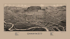 Historic Map Oneonta New York 1884 Otsego County 18x24 24x36 36x54 Poster NEW