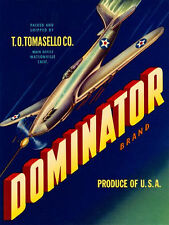 Dominator airplane shooting WWII Poster 18x24 24x36 36x54 NEW Advertising Vntg