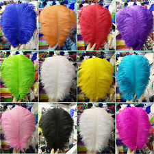 Wholesale/10/50/100 pcs high-quality natural ostrich feathers 6-30 inch/15-75cm¥
