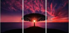 Sunrise Between Branch Canvas Prints Wall Art Abstract Paintings Scenery Artwork
