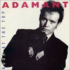 """Adam Ant-Room At The Top 7"""" 45-MCA Records, MCA  1387, 1989, Picture Sleeve"""