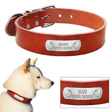 Custom Genuine Leather Dog Collar with Personalized Name Plate Free Engrave SML