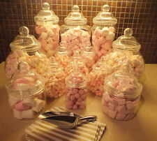 SET of 13 Jars including-2 Scoops 2 Tongs & 100 Sweet Bags-Candy&Wedding Buffets