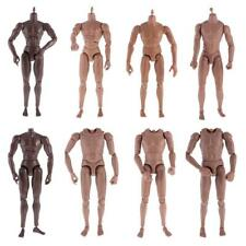 12inch Action Figure 1/6 Scale Muscular Male Nude Body for Hot Toys Head Display