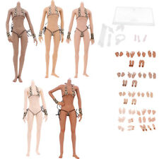 Female Stainless Steel Skeleton 12inch Nude European Body Doll Action Figure