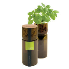 Herb Grow Bottle Recycled Wine Bottle Hydro-garden Basil, Oregano or Parsley