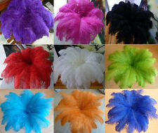 Wholesale 10-100pcs ostrich feathers 10-12inch / 25-30cm variety of colors