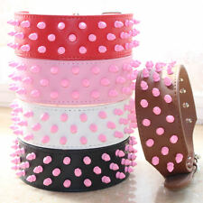 Leather Pet Dog Collars Pink Spikes & Studs Dog Collars Pit bull Terrier Collars