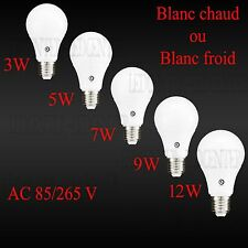 Ampoule Led E27 100W=12w 75W=9w 60W=7w 45W=5w 30W=3w Blanc Chaud ou Froid 230 V