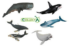 *BRAND NEW* WHALE MODELS by COLLECTA - SPERM, KILLER, HUMPBACK, BLUE & BELUGA