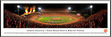 Clemson Tigers Frank Howard Field Stadium Panoramic Photo #2 NEW