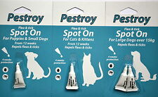 Flea and Tick treatment for Dogs/Cats/Kitten/Puppies from Pestroy by Bob Martin