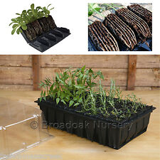 RAPID ROOTRAINERS PROPAGATOR SYSTEM, Root Trainers, Propagator Lid, Seed Tray