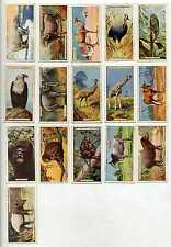 Pick Your Card: Natural History 1924 - John Players Cigarette Cards