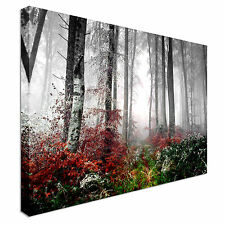 Landscape art forest mist morning Canvas Wall Art Print Large + Any Size