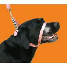 CANNY COLLAR (PINK) THE BEST TRAINING COLLAR ON THE MARKET AUTHORISED SELLER