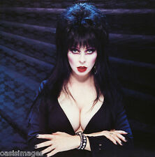 Elvira mistress of the dark  Quality glossy Photo print  A4, or A5 size