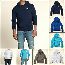 "2014 Hollister by Abercrombie Sweatshirt  Hoodie ""Big Dume"" S M L XL"