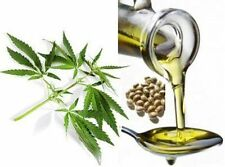 100% Natural Pure Hemp seed Oil -Free Shipping**
