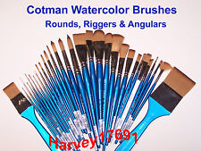 Winsor & Newton Cotman Watercolor Brushes - Rounds, Riggers & Angulars - NEW!