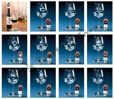 NFL Football Team Wine Glass and Stopper Set NEW