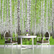 WALL MURALS WALLPAPER COVERINGS DECORATIONS NON WOVEN HOME ART BIRCH TREES 157VE