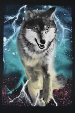 Tony Hawk Gray Wolf Wolves Adult Graphic Tee T-Shirt New With Tags