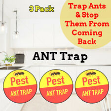 NEW ANT TRAPS- Pre Baited Insect Roaches Killer Glue Poison Free Indoor Outdoor