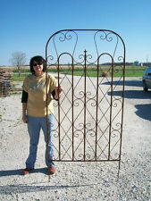 Really BIG Metal Garden Trellis for a Large Screen for Flowers - Privacy