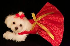 Small Gold Swirls on Red Christmas Dress-Dog dress clothes-Puppy Apparel -TOY