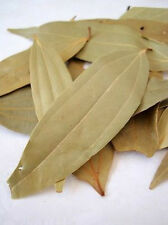 BAY LEAVES Whole Indian Cooking SPICES Best Quality Tej Patta *SHIPS FREE WORLD