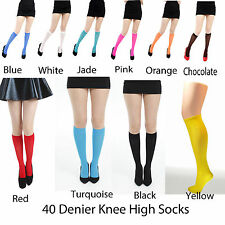 Pamela Mann Knee High Socks Nylon Elastane Ladies Girls 50 Denier Many Colours