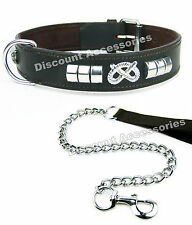 BROWN LEATHER DOG COLLAR AND CHAIN LEAD CHROME EXTRA HEAVY STAFFY STAFFIE STAFF
