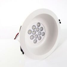 12 W 12-LED Energy Saving RECESSED CEILING DOWN Spot LIGHT- Warm Cool White