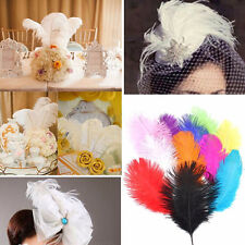 10x Ostrich Feather DIY Crafts Natural 6-8'' Feathers Beautiful Wedding Party UK